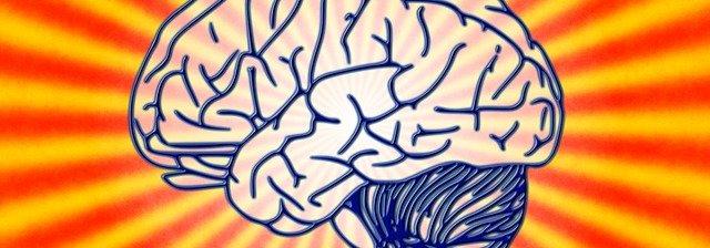 brain-78440_640.jpg