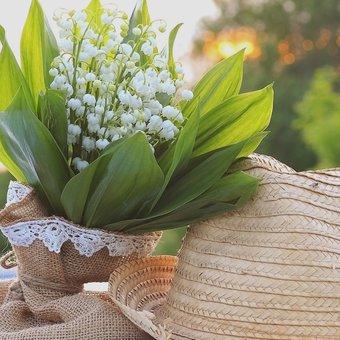 Image de 1er mai : fête du travail et muguet  - Activités et bricolage