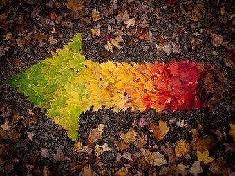 Image de Land Art GS-CP-CE1-CE2-CM1-CM2 - Fée des écoles