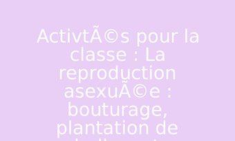 Image de Activités pour la classe : La reproduction asexuée : bouturage, plantation de bulbes et tubercules