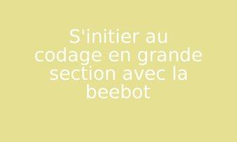 Image de S'initier au codage en grande section avec la beebot