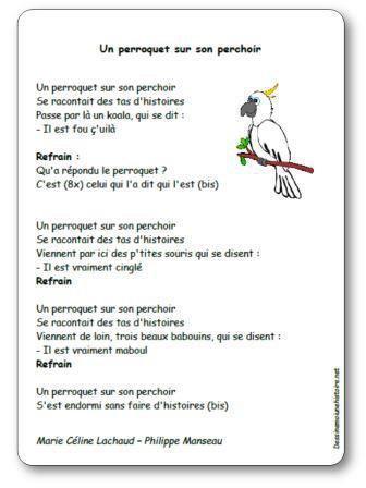 Image de « Un perroquet sur son perchoir » une chanson de Marie Céline Lachaud et Philippe Manseau