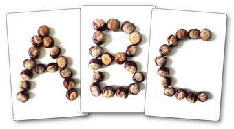 Image de Que faire avec des marrons en maternelle ?