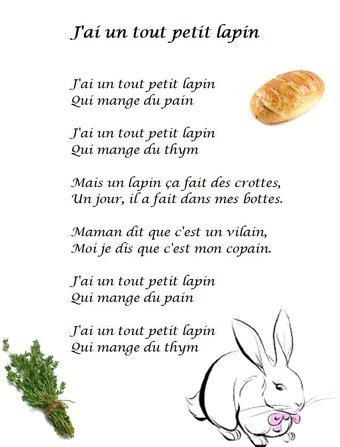 Image de Comptine « J'ai un tout petit lapin »