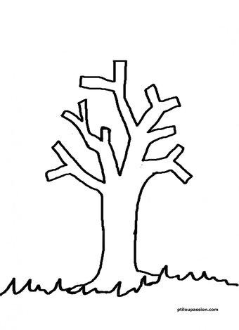 Image de Cinq feuilles sur un arbre