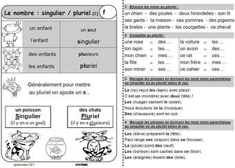 Image de CE1 grammaire exercices et leçons