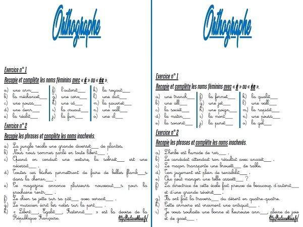 Cm Orthographe Les Fiches D Exercices Par La Classe Bleue