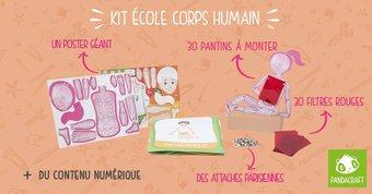Image de Kit corps humain de chez Pandacraft