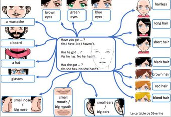 Image de Carte mentale anglais « The face »