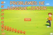 Image de Problèmes de logique junior