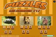Image de Puzzle animaux : tortue - ours - singe
