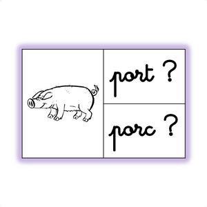 Image de Les homonymes lexicaux