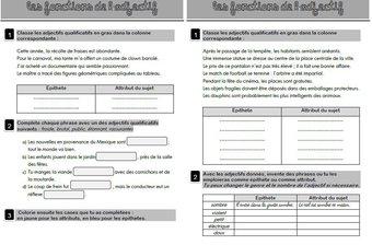 Image de Les fonctions de l'adjectif qualificatif (épithète ou attribut du sujet) : affiches et exercices d'entraînement