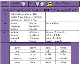 Image de Des tableaux pour l'accord des noms et des adjectifs