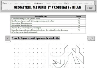 """Image de Maths CM1 : toutes mes évaluations """"programmes 2016"""""""