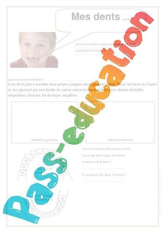 Image de Mes dents – Ce1 – Exercices – Corps humain – Sciences – Cycle 2