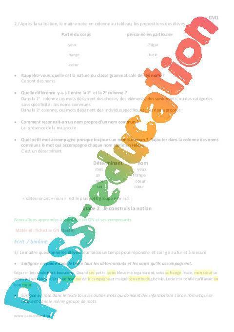 Groupe nominal - Cm1 - Fiche de préparation par Pass-education.fr - jenseigne.fr