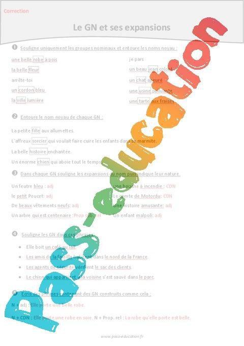 Groupe Nominal Et Ses Expansions Cm2 Exercices A Imprimer Par Pass Education Fr Jenseigne Fr