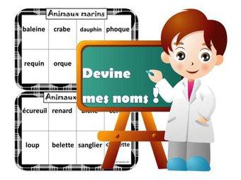 Image de Grammaire / lexique – les noms , le mot étiquette cp/ce1