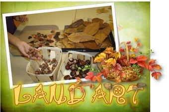 Image de Land art : mandala d'automne