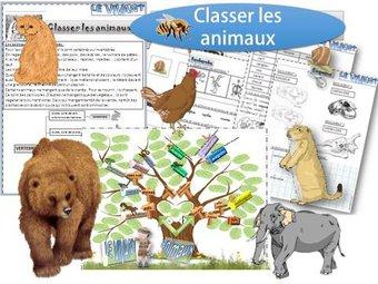 Image de DDM – Comment classer les animaux ?