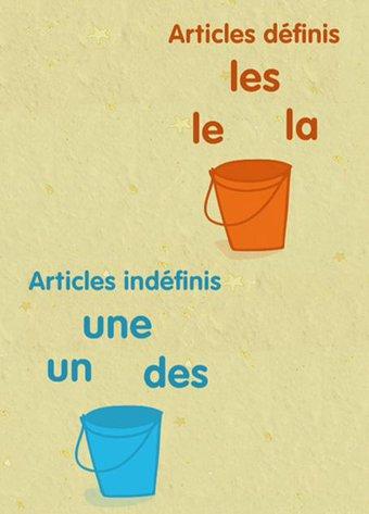 Image de Les articles définis et indéfinis - Les animations des Fondamentaux