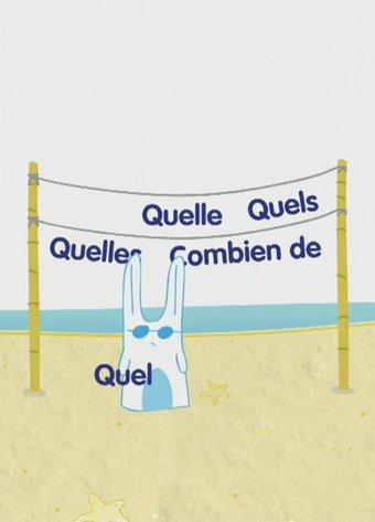 Image de Les déterminants interrogatifs - Les animations des Fondamentaux